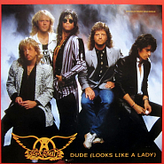 Aerosmith - Dude (Looks Like A Lady) piano sheet music