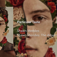Shawn Mendes - Particular Taste piano sheet music