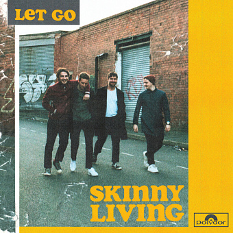 Skinny Living - Let Go piano sheet music