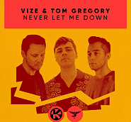 VIZE and etc - Never Let Me Down piano sheet music