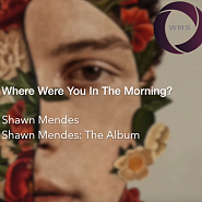 Shawn Mendes - Where Were You In The Morning? piano sheet music