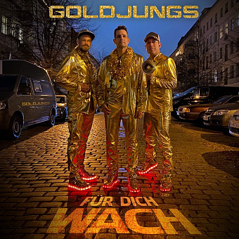 Goldjungs - Für dich wach piano sheet music