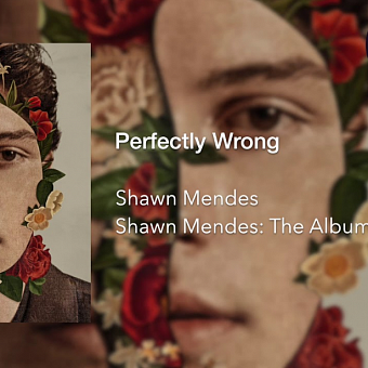 Shawn Mendes - Perfectly Wrong piano sheet music