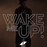Avicii - Wake Me Up piano sheet music