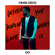 Craig David - When You Know What Love Is piano sheet music