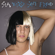 Sia - Bird Set Free piano sheet music