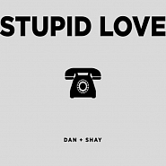 Dan + Shay - Stupid Love piano sheet music