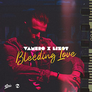 VAMERO and etc - Bleeding Love piano sheet music