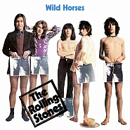 The Rolling Stones - Wild Horses piano sheet music
